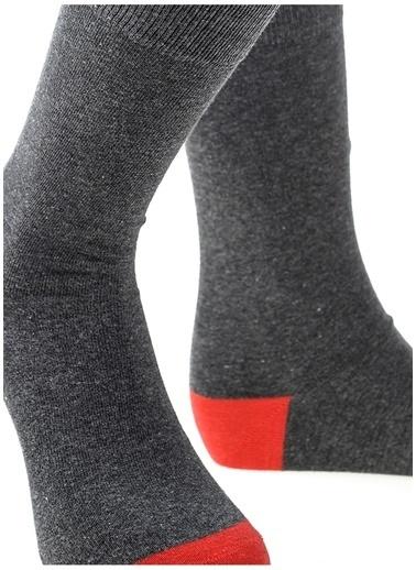 Pixter&Bro Pixter&Bro Tekli Çorap Renkli